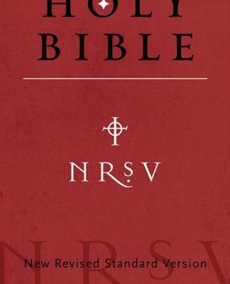 NRVS Bible - Kindle